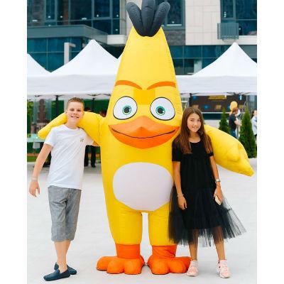 Ростовая кукла Angry Birds
